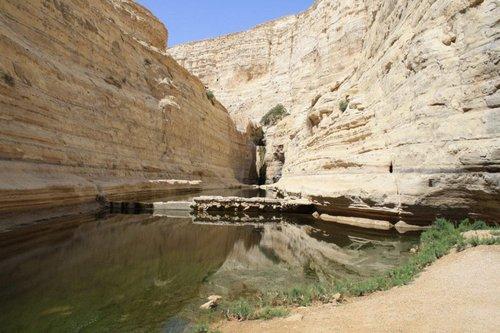 Эйн-Авдат. Оазис посреди пустыни Негев