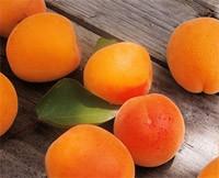 Абрикос. Полезные свойства абрикоса
