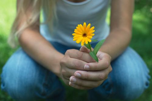 Почему я так не люблю желтые цветы?